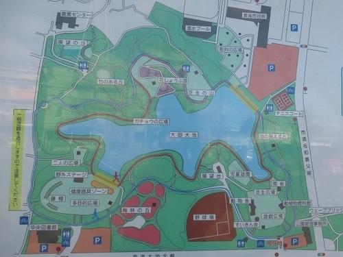 東海 市 大池 公園